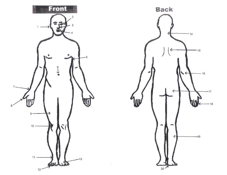 Body Parts Test
